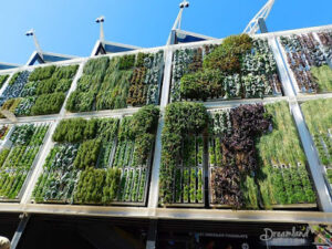 Grow a Successful Vertical Garden: The Current Trend of Planting And Home Gardening