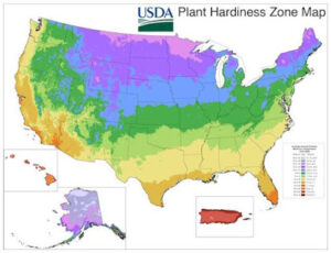 Learning about Gardening Zones
