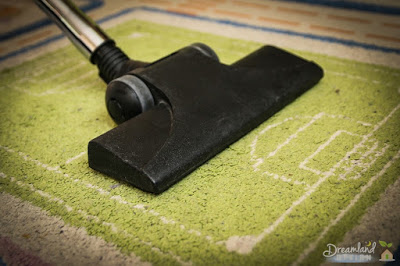 Finding Viable Cleaning Options for Carpets in Your Home