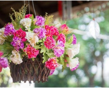 Featured of Flower Pot Design: Best Potted Plants to Decorate Your Patio or Pergola