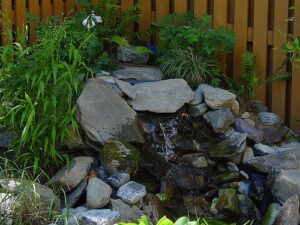 Water Garden Ideas: Learn Basics of DIY Rock Waterfall Creation