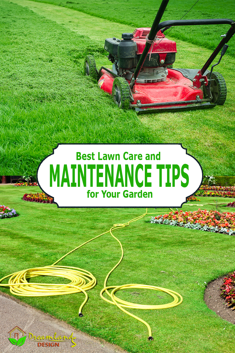 Pic of Best Lawn Care Tips and Lawn Maintenance Tips for Your Garden