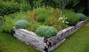 Create an Instant Lawn and Grow Some Vegetables (How to Renovate a House with No Money)