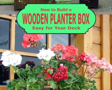 Featured image - How to Build a Wooden Planter Box Easy