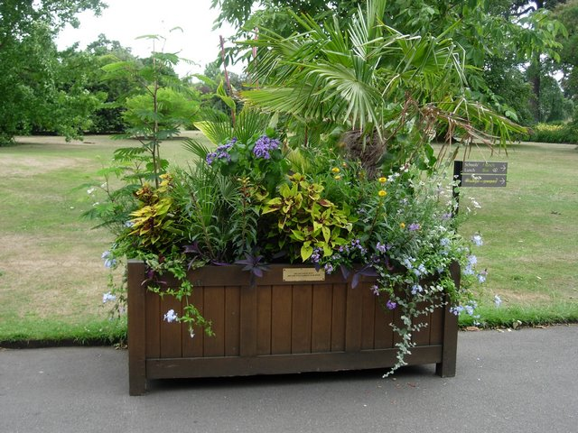 Pic of Wooden Planter Box - How to Build a Wooden Planter Box Easy