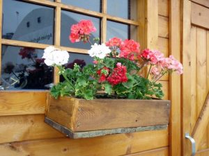 Pic of Windowbox (How to Build a Wooden Planter Box Easy)