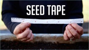 Bought A Few Packs of Seed Tape, Now I'm Making My Own