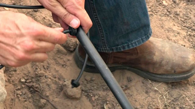 Adding a Branching Connector (Emitter) - How to Lay and Install Drip Irrigation System for your Garden