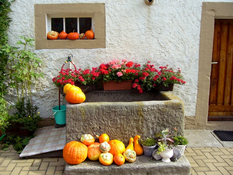 Flower, Home, Porch, Autumn, Halloween, Backyard - Outside Fall Decorations, Creating Homemade Fall Lawn Decorations