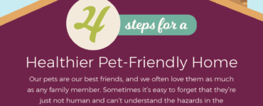 Featured of 4 Steps for a Healthier Pet-Friendly Home