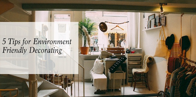 Eco Friendly Home Decor: 5 Tips for Environment Friendly Decorating