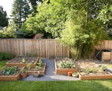 Featured of 5 Budget Friendly Gardening Tips (Budget Gardening Tips)