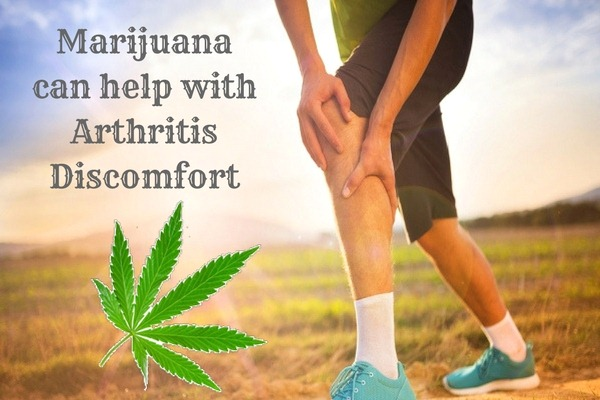 Arthritis Discomfort - Health Benefits for Growing Marijuana in Your Garden