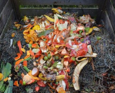 Featured image - How to Build a Compost Pile