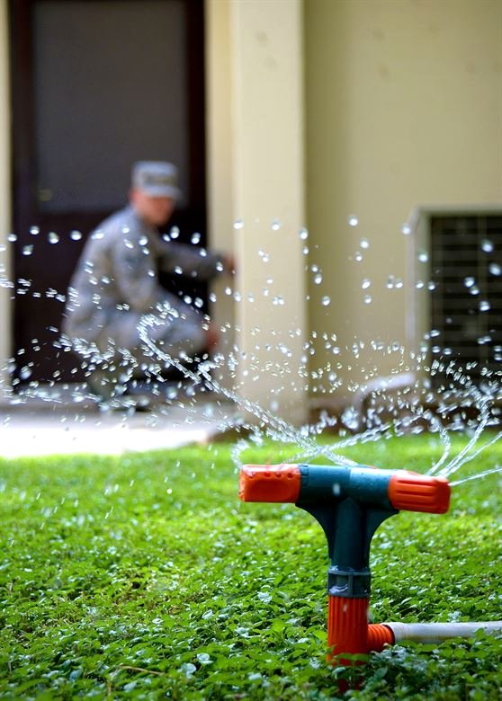Use Better Watering Techniques in the Garden