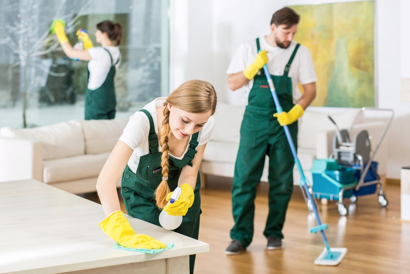 Should I Hire a Professional Maid Service or an Individual Maid?