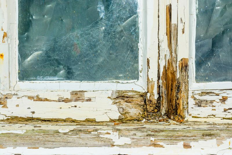 Essential Signs That Your Old Windows Need to Be Replaced for Safety