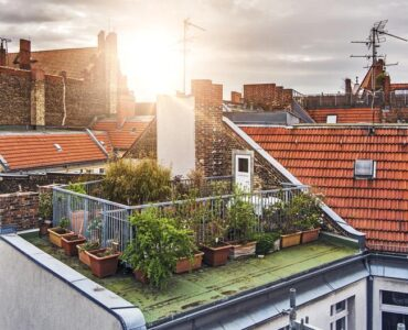 Featured of A Concise Guide to Rooftop Gardens