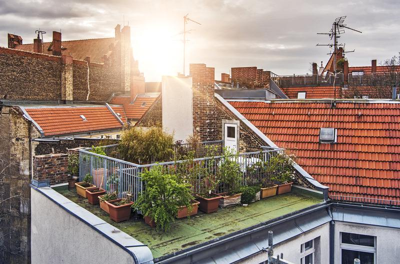 Rooftop Gardens: A Concise Guide