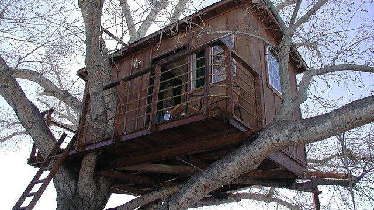 Picture of: How To Make A Treehouse Simple Tree House Ideas