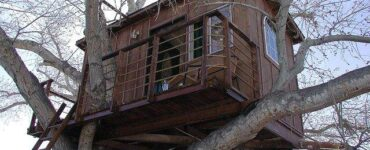 Featured of DIY Simple Tree House Ideas: How to Make a Treehouse