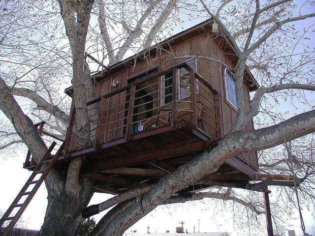 Simple Tree House Ideas: How to Make a Treehouse