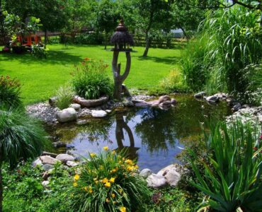 Featured image - How to Make a Small Garden Pond Without a Great Expense