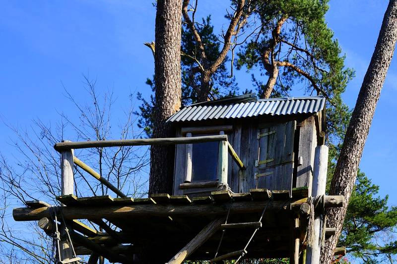 Treehouse - 7 Ways to Get Rid of Your Boring, Barren Backyard