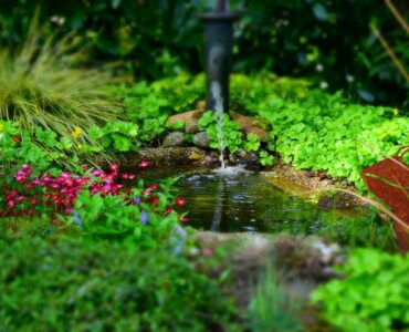 Featured of 7 Landscape Design Trends Prevailing