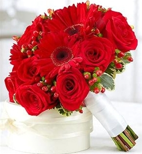 Red Roses With Gerbera - Types of Flowers and Roses Which Will Make Your Garden Looks Attractive