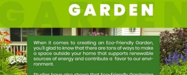 Featured of 10 Brilliant Ways to Create an Eco-Friendly Garden