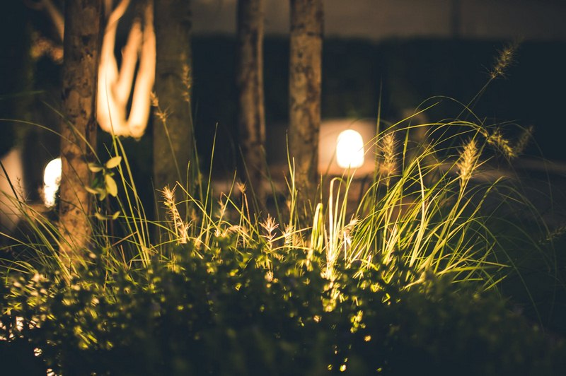 Garden Lights - 5 Tips for an Amazing Outdoor Space