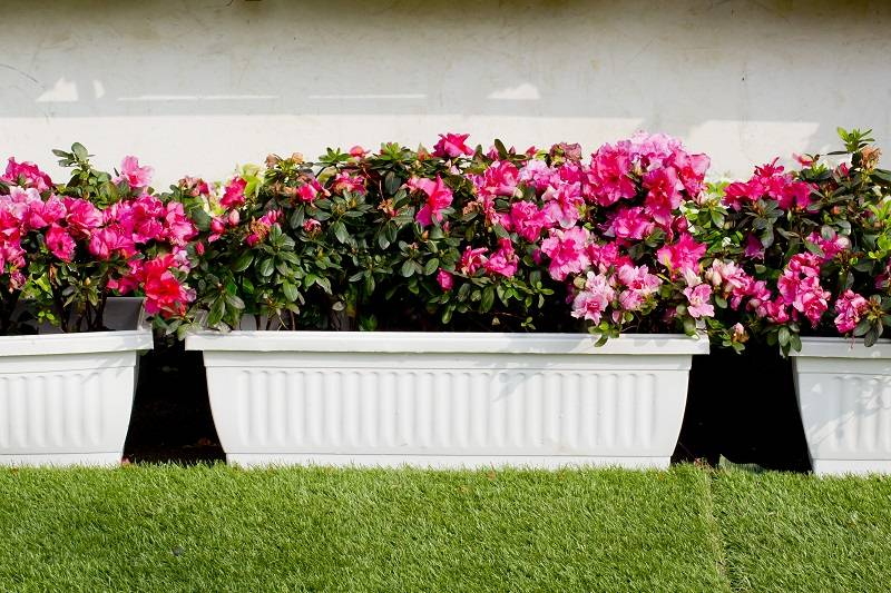 The Various Kinds of Planter Boxes to Create an Appealing Landscape