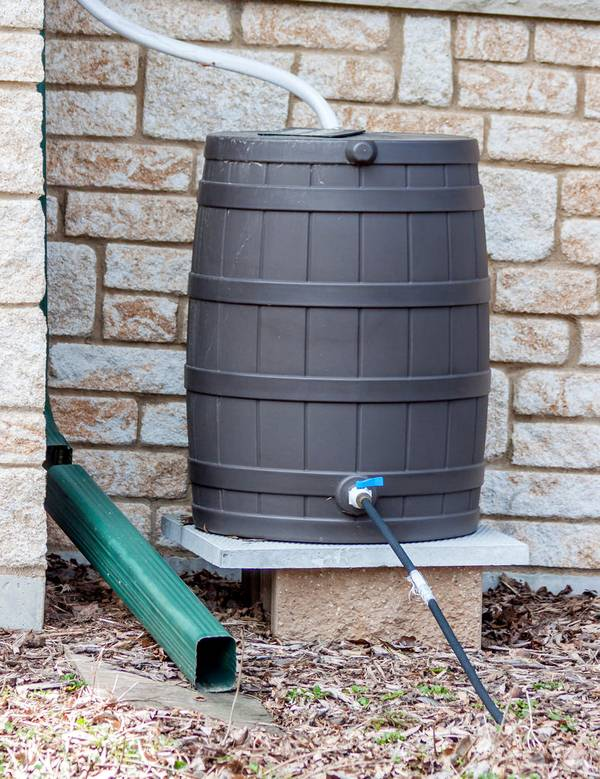 To Buy or DIY, That Is the Question: What Is the Best Option for Your First Rain Barrel?