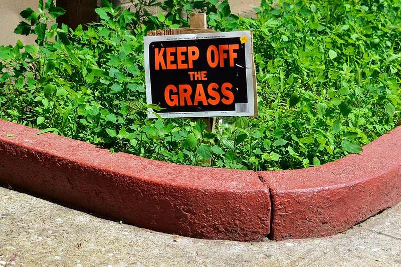 Garden Edge - Steps to Winterize Your Lawn