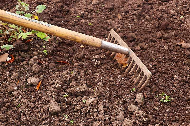 Rake Cover Soil - Important Steps to Winterize Your Lawn