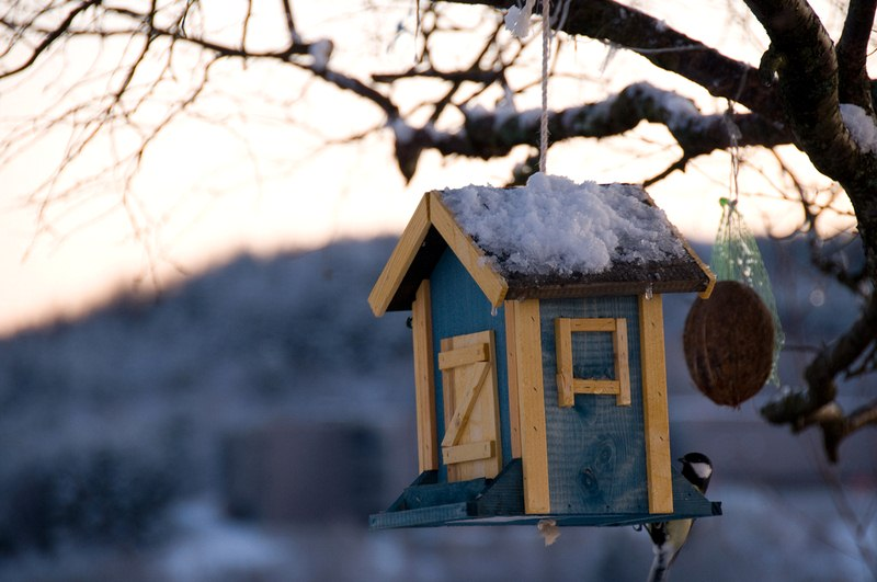 Important Steps to Have Your Home Ready for Winter