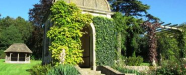Featured of 3 Ways to Make Your Garden Look Great