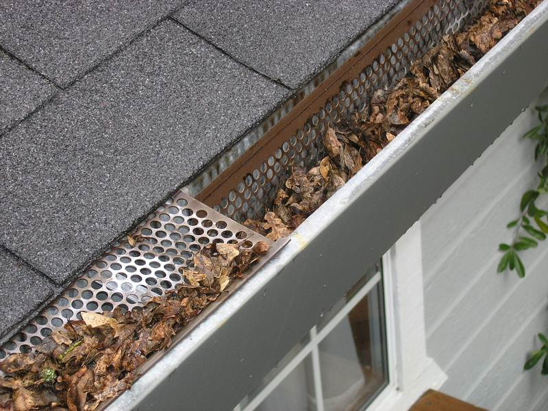 How to Keep Your Leaf Gutters Clean