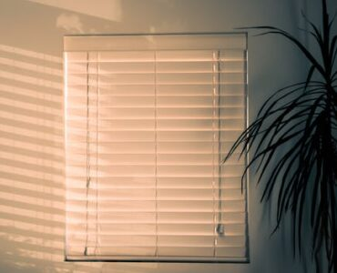Featured of Windows With Motorized Shades