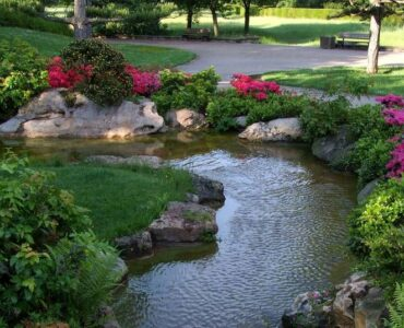 Featured of 5 Things to Consider When Setting Up a Garden Pond