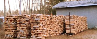 Featured of Choosing Good Quality Firewood for Winters Preparation