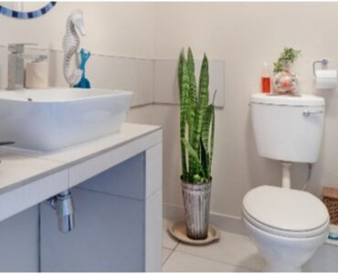Featured of How to Eliminate Bad Odours from Your Bathroom for Good