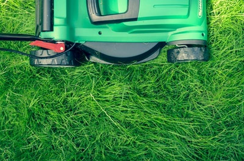 Lawn Design Tips That Will Transform Your Exterior of your home