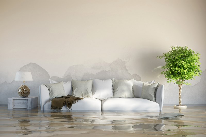 Prevention of Floods - Essential Flood Prevention Tips All Homeowners Should Know