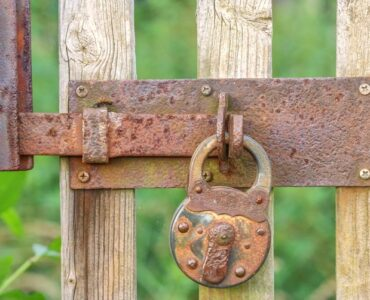 Featured image - Garden Security - 9 Key Ways to Deter Garden Thieves