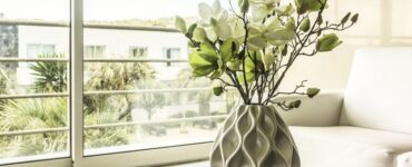 Featured image - Green Living - 9 of the Best Indoor Plants for Apartments