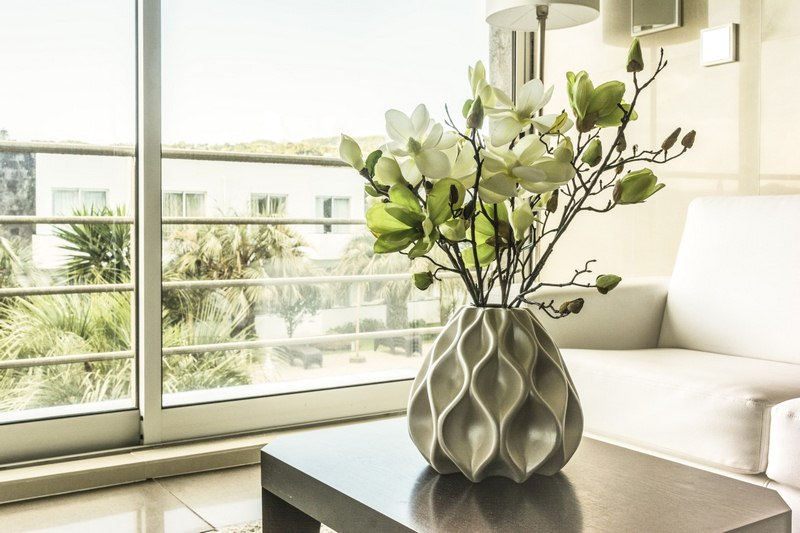 image - Green Living - 9 of the Best Indoor Plants for Apartments
