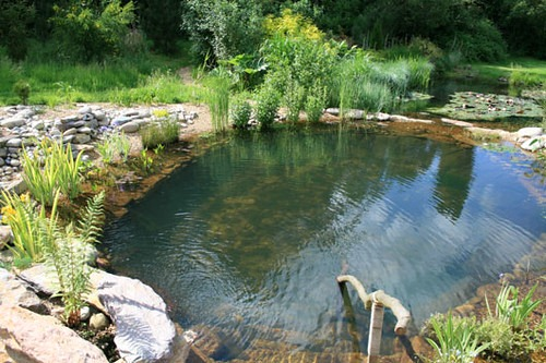 image - DIY Tips on How to Build Your Own Swimming Pool
