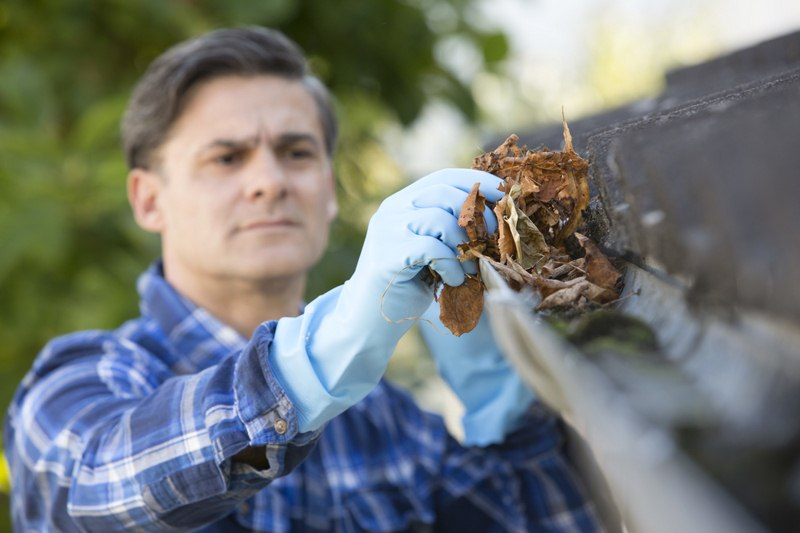 image - The Ultimate Gutter Cleaning Guide - What You Need to Know
